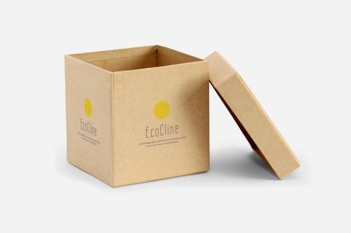 Boîte kraft avec couvercle